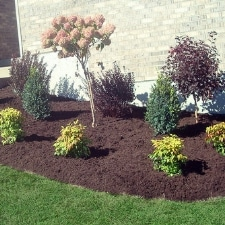 Northern Kentucky Landscaper